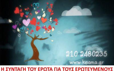 Το Δέντρο του Έρωτα