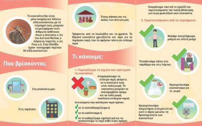 Ενημερωτική εκστρατεία για την εξάλειψη του κουνουπιού-τίγρης, πόρτα-πόρτα σε πολίτες της Δ. Αττικής